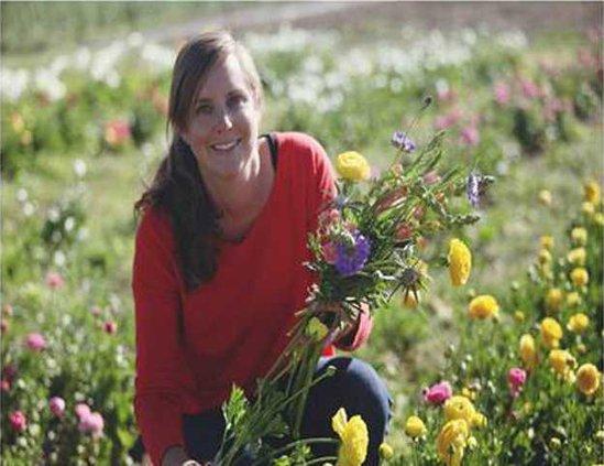 ripon garden photo