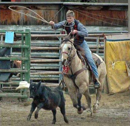 3-30 OAK Rodeo