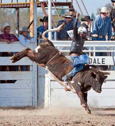 4-13 OAK Rodeo1
