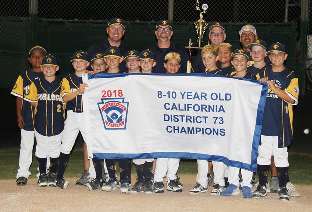 Turlock american 10s district champs 1