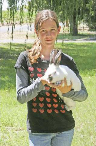 Local rabbit champ dreams of national stage - Turlock Journal