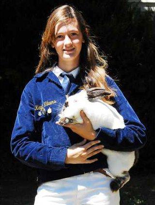rabbit pic1