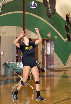 pitman vb pic 1