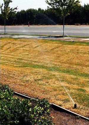 0691 Watering-Irrigation-