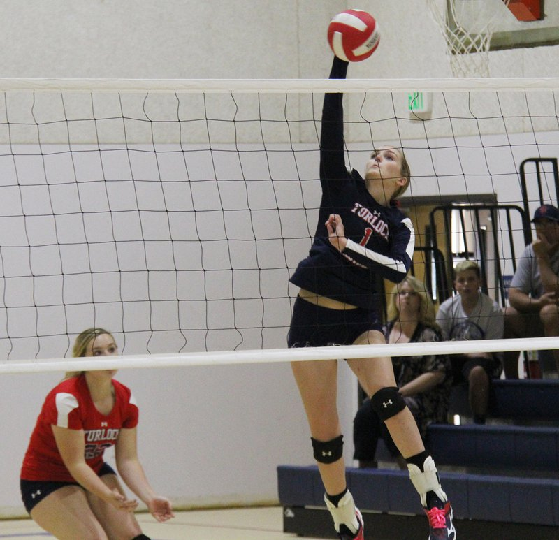 TC volleyball pic1