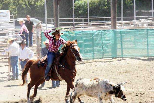 jr rodeo pic1
