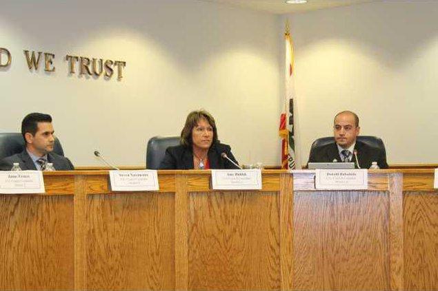 city council pic 1