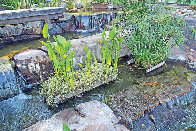 GardenTourMathews-7