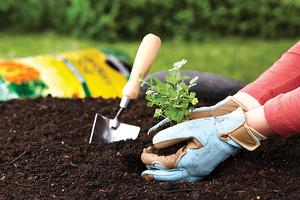 5603-gardening.png