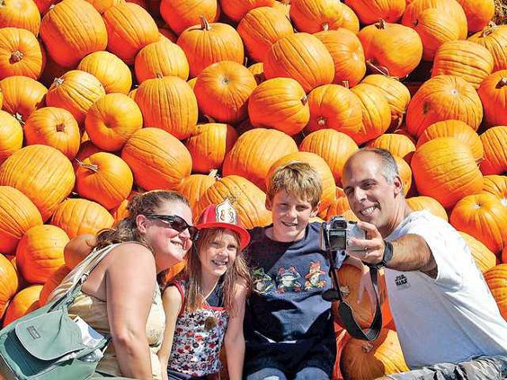 PUMPKIN1 9-29-08 copy