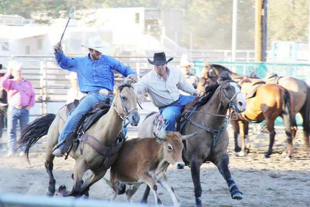 rodeo pic3