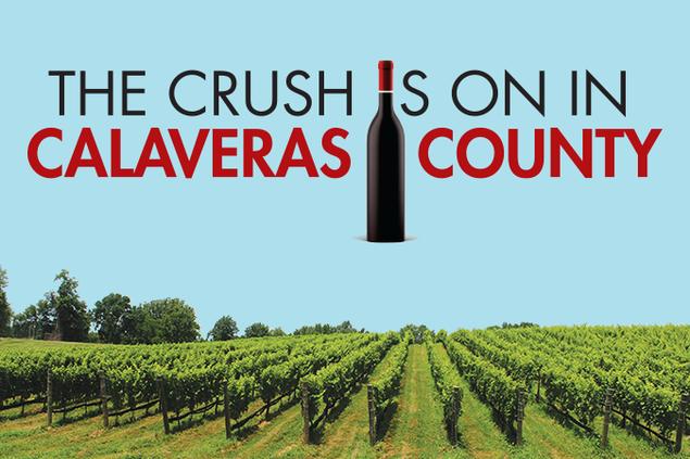 5532-wine-crush.png