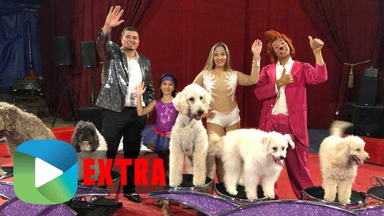 5514-Olate-Dogs-Extra-THUMB.jpg