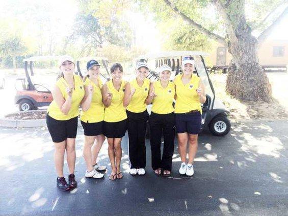 THS Golf Team pic contr.