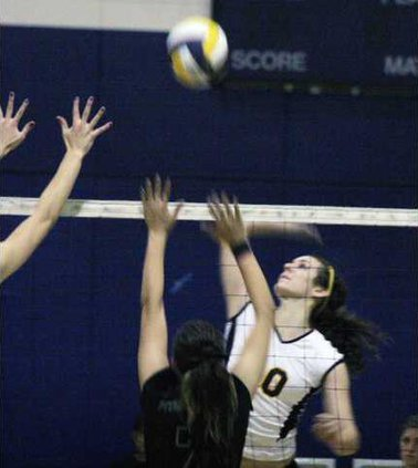 volleyball pic2