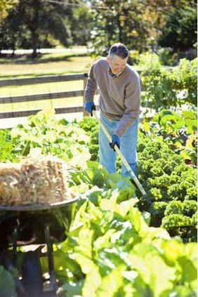 Garden pix 5-25