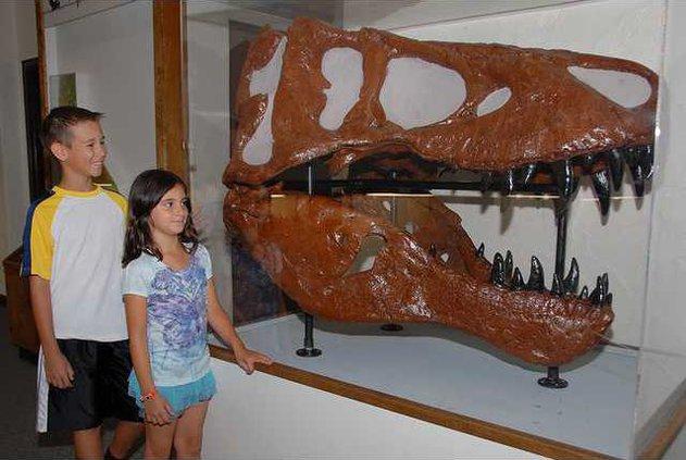 Dinosaur pix.png