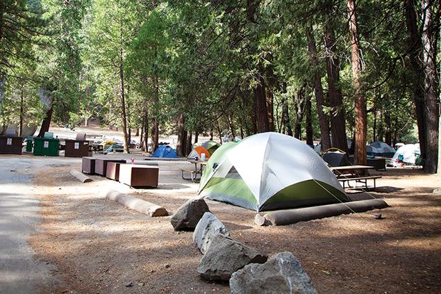 1159-camp.png