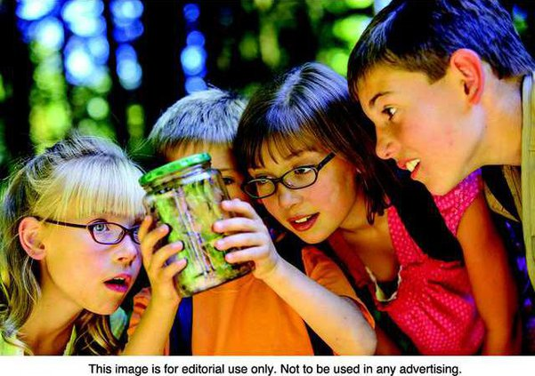 Summer kids photo