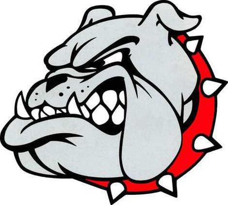 Bulldog head color