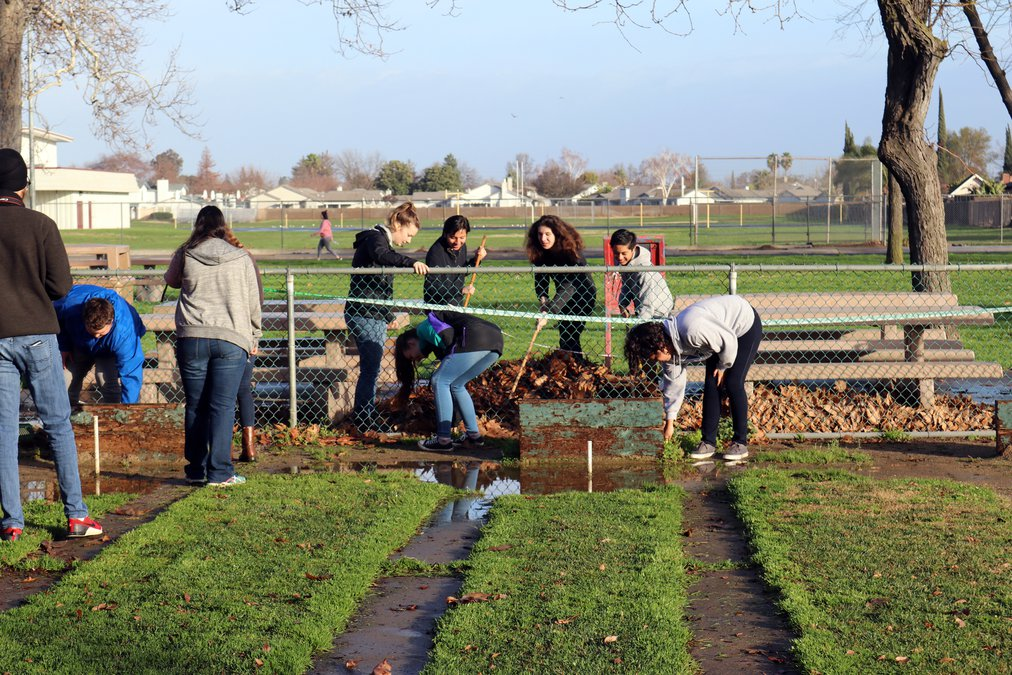 City to seek volunteers to clean up parks - Ceres Courier