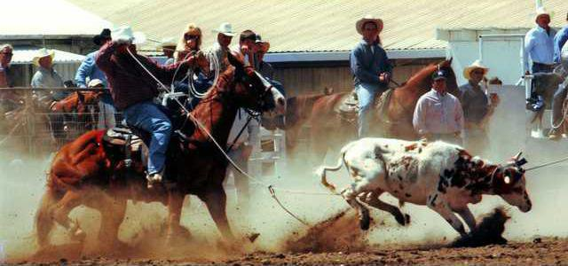 4-6 OAK Rodeo prev2
