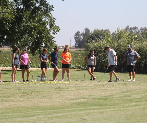 Pitman golf