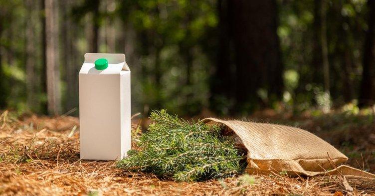 Evergreen packaging 1