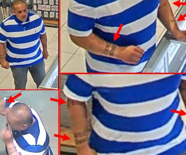 target theft suspect 1