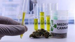 marijuana testing