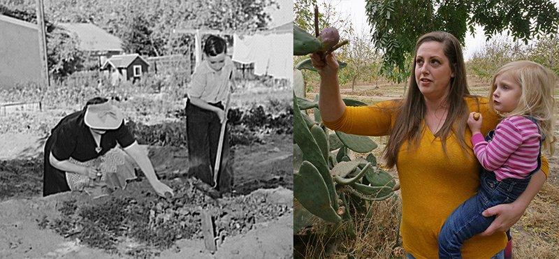 Turlock housewives gardening